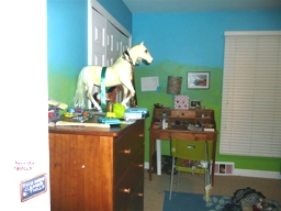 Kendall's room Before5